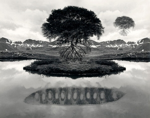 """This photo montage by pioneering photographer Jerry Uelsmann, """"Untitled, 1969,"""" was part of the first major exhibit by MTSU's Baldwin Photographic Gallery in 1974."""