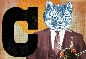 C-is-for-Cat slider