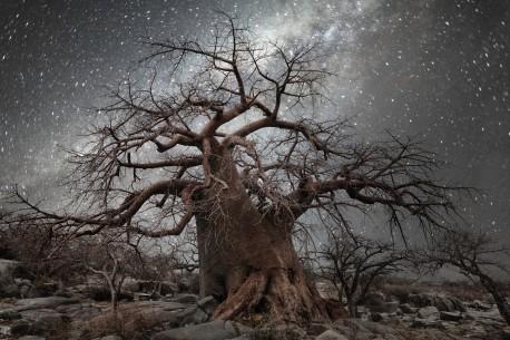Constellation Beth Moon, Octans 2016.jpg